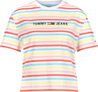 Summer Stripe Logo
