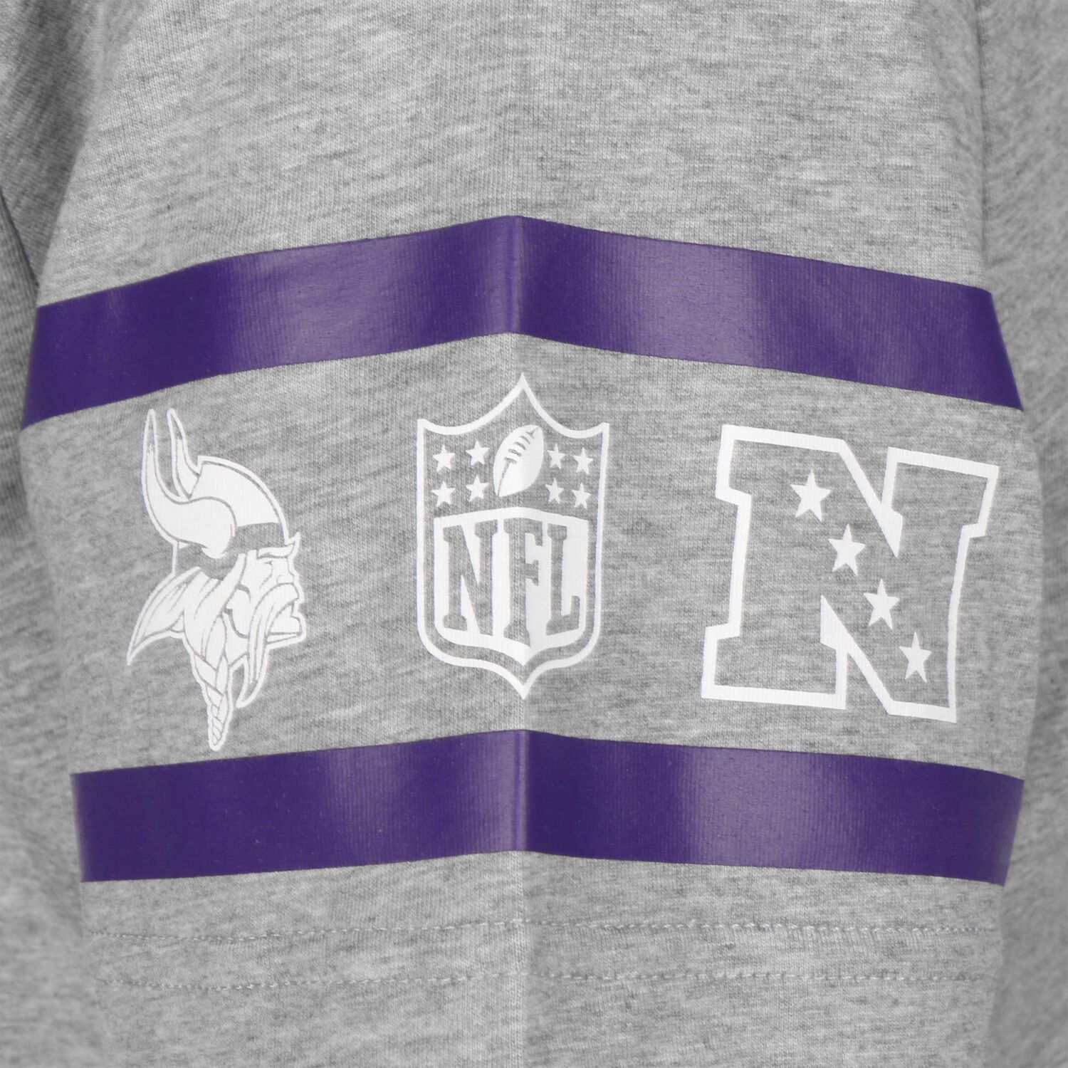 NFL Team Established Minnesota Vikings