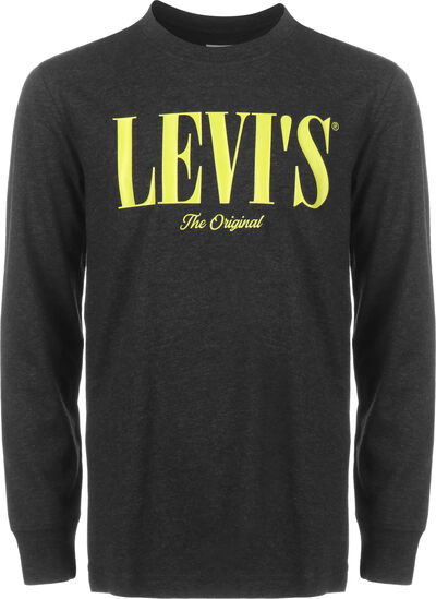 LVB LS Graphic
